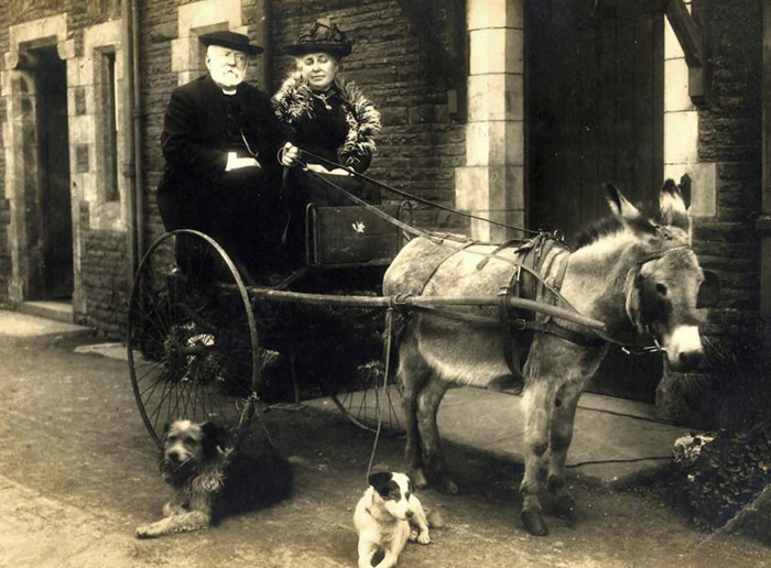 Victorian couple riding donkey drawn trap, with 2 dogs in the foregrounds. An image from the Brecknock Society's collection.
